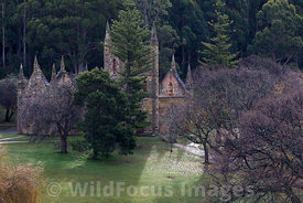 The church ruin at Port Arthur Penal Settlement, Port Arthur, Tasmania, Australia; Landscape