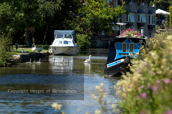 Boats at Stratford upon Avon, Warwickshire. Swans and riverboats, river Avon.