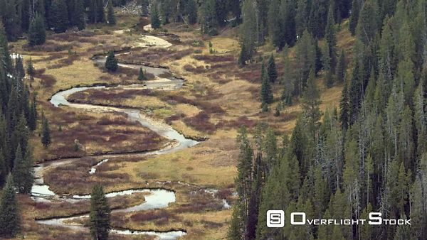 A small, colorful mountain stream winds through a meadow in Yellowstone National Park