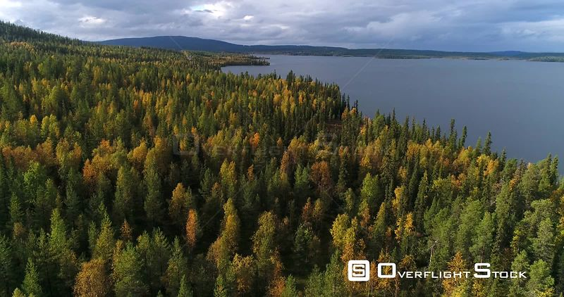 Autumn Forrest, Aerial Decreasing View Above Colorful Autumn Trees and Fjeld Tunturi Peaks, Near of Sarkijarvi Lake, on a Sunny and Rainy Fall Day, Near Pallasyllas National Park, Lapland, Finland