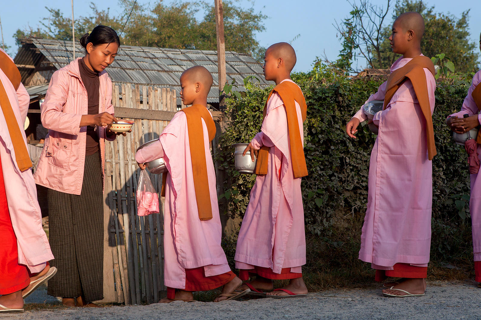 Nonnes faisant la quête à Nyaungshwe, Birmanie / Nuns doing the quest in Nyaungshwe, Burma