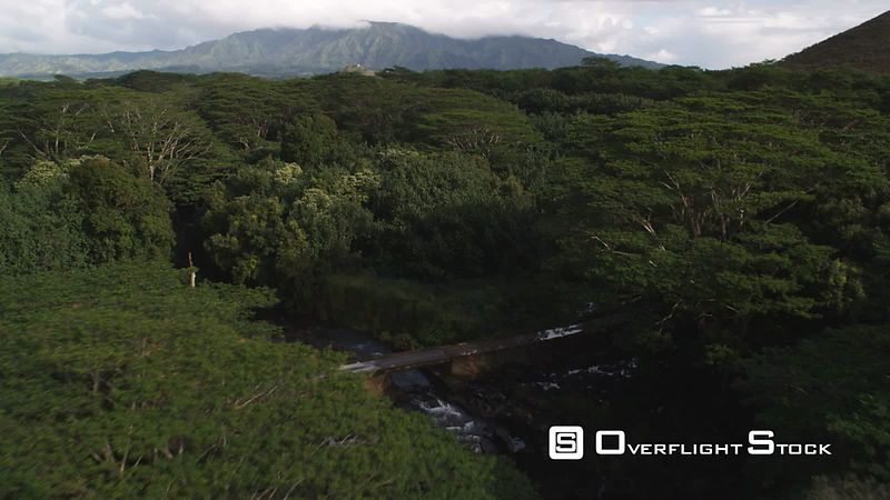 Over Wailua River Park, Kauai