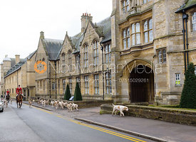 Chris Edwards and hounds past Uppingham School