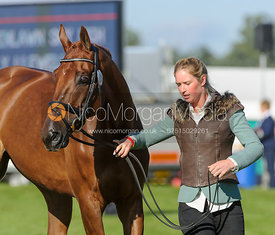 Emily Llewellyn and GREENLAWN SKY HIGH - The final trot up, Burghley Horse Trials 2013.