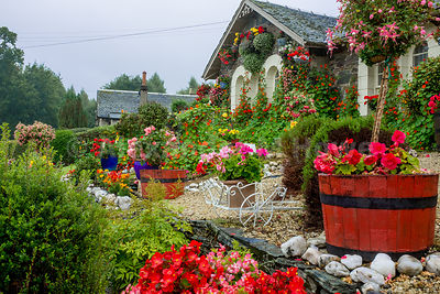 Beautiful colourful garden on the banks of Loch Lomond.