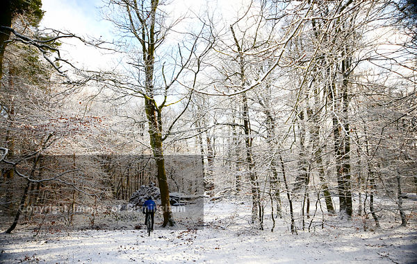 Lickey Hills Country Park, Rednal, Birmingham in snow at winter.
