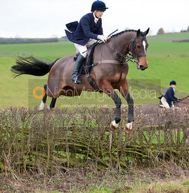 Members of the field jump a hedge