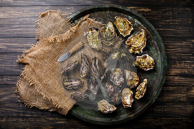 Assorted fresh Oysters, and knife in tray on dark background