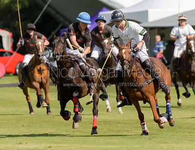 Polo photos