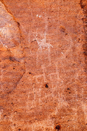 Detail of horse and camelid petroglyphs in San Pedro Valley near San Bartolo, Region II, Chile