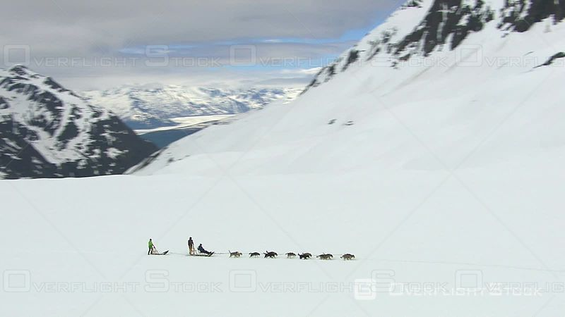 Dog Sledding on Alaskan Glacier, Wide Footage