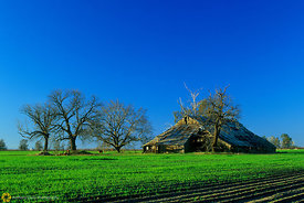 Barn near Bayliss