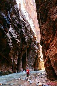 Man hiking in the Narrows, Zion National park, USA