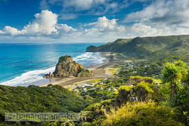 ZEA6766 Piha, North Island, New Zealand