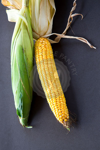 a pair of sweetcorn cobs against a dark plain background