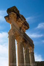 Columns on the stage area at the Theatre of Dougga; Tunisia; Portrait