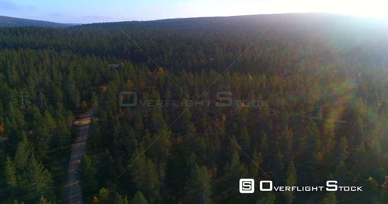 Forest Road, Aerial View Over a Sand Road in Arctic Green Pine Trees, in Urho Kekkonen National Park, Near Saariselka, in Lapland, on a Sunny Autumn Morning Dawn, in Lappi, Finland