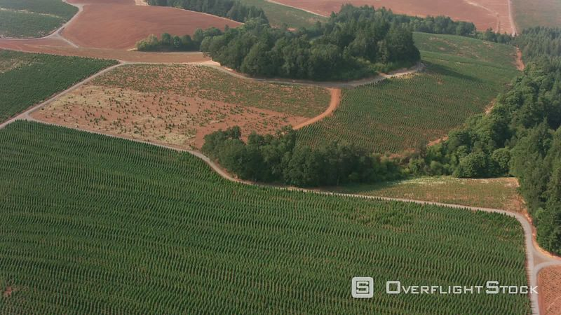 Oregon Aerial shot of farmland near Salem, Oregon.  Shot with Cineflex and RED EpicW Helium.