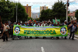 Coca sellers union marching to celebrate Bolivia rejoining the 1961 UN Convention , La Paz , Bolivia