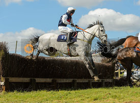 SPEEDY BRUERE (S. Lee) - Novice Riders - Woodland Pytchley at Dingley 15/4