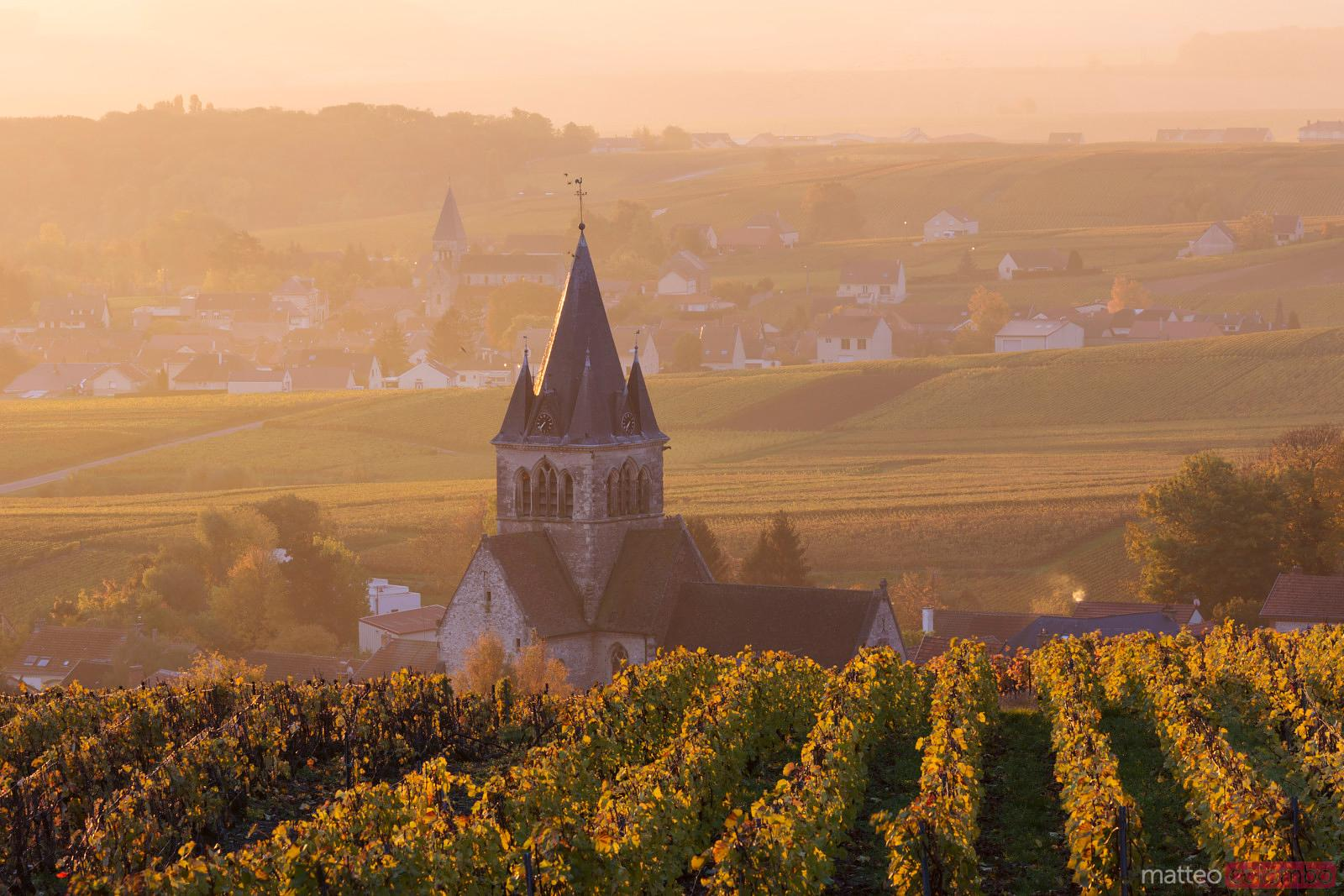 Ville Dommange and its vineyards, Champagne, France