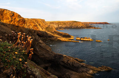 Pembrokeshire Coast National Park, Wales, UK photos