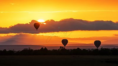 Hot Air Balloons in Surise Orange Africa Sky