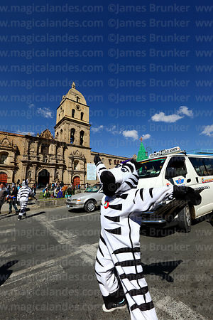 A zebra helps pedestrians cross the road in front of San Francisco church, La Paz, Bolivia