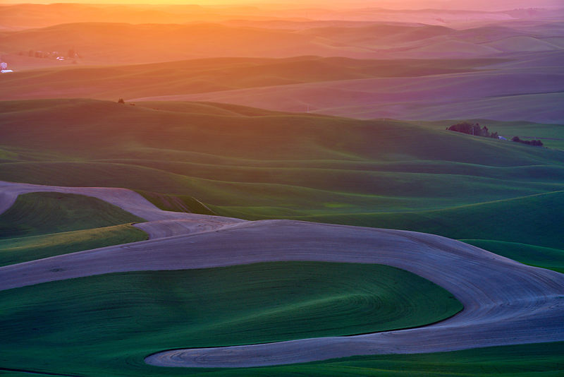 Glowing Palouse