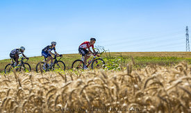 Three Cyclists in the Plain - Tour de France 2016