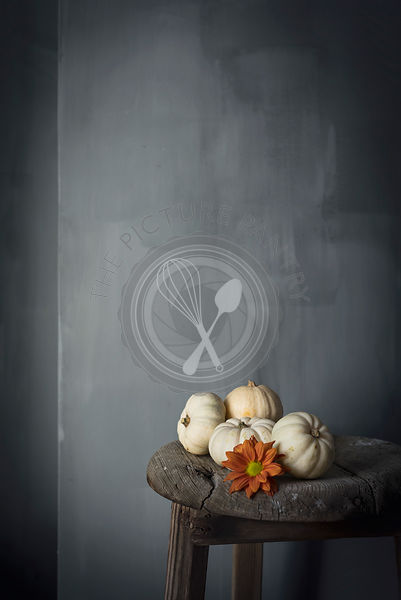White mini pumpkins against a gray wall