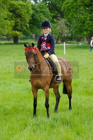 Championship 7- BSPS Open mini Show Pony Championship - Baston South Lincs Show 2016