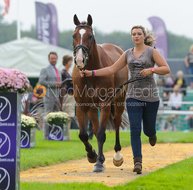 Sarah Stretton and SKIP ON II - The first vets inspection (trot up),  Land Rover Burghley Horse Trials, 3rd September 2014.