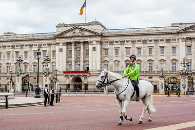 Mounted police officer riding past Buckingham Palace