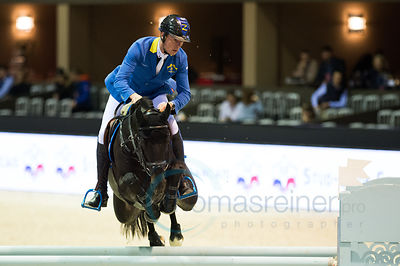 Bordeaux Young Sires Masters by SELLE FRANCAIS Fotos