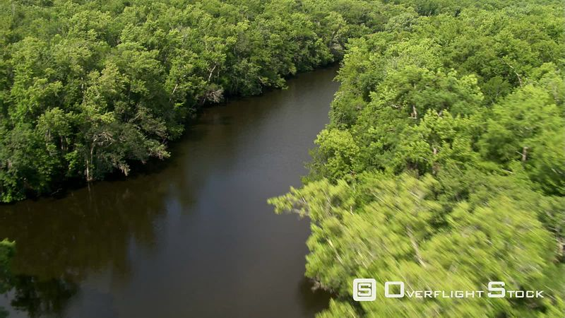 Low flight up a tree-lined river in rural Florida to view of open water