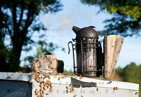 Smoker on top of the Hive