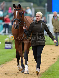 Mackenna Shea and LANDIOSO at the trot up, Land Rover Burghley Horse Trials 2017
