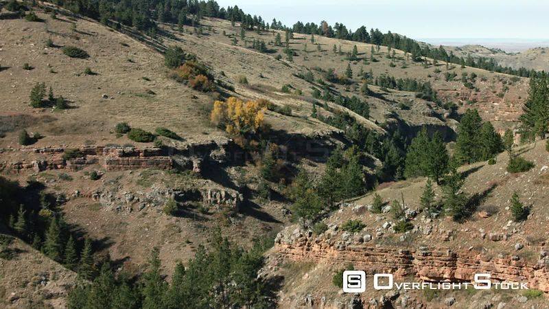 A narrow forest-lined canyon sits in stark contrast with the surrounding high desert of southern Montana