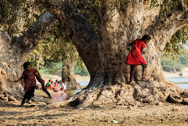 Girls Playing Hide and Seek at a Waterhole