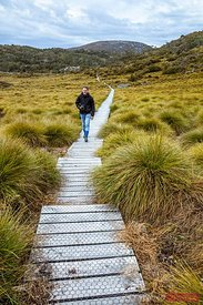 Hiker walking on boardwalk, Cradle mountain, Tasmania