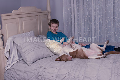 Full body laughing boy with upside down dog on bed