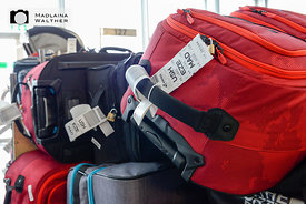 Luggage of the Swiss Interski delegation at Zurich Airport.