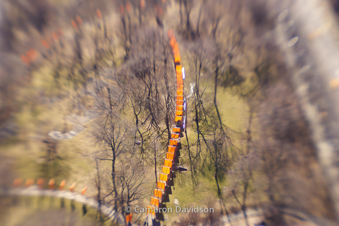 Aerial of New York city, The Gates, Central Park