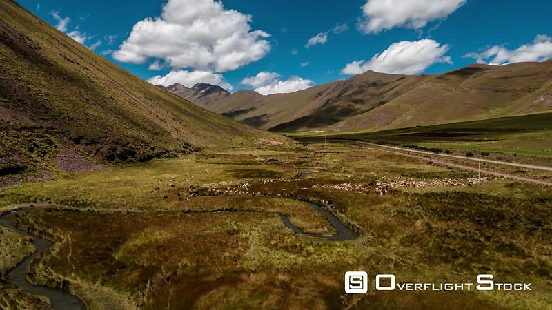 Aerial view of Abra La Raya, Andes, Flying over Llamas by drone, Peru