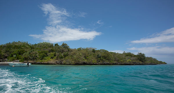 Ile aux Aigrettes is only accessible by boat, arriving at a small jetty on the west of the island