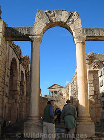 Looking north towrd the Capitol from the frigidarium (cold room) of the  Licinian Baths at Dougga; Tunisia; Portrait
