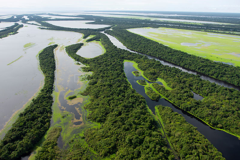 Aerial view of flooded forests, Anavilhanas Archipelago, Anavilhanas National Park, in the Rio Negro, Amazonas, Brazil February 2011.
