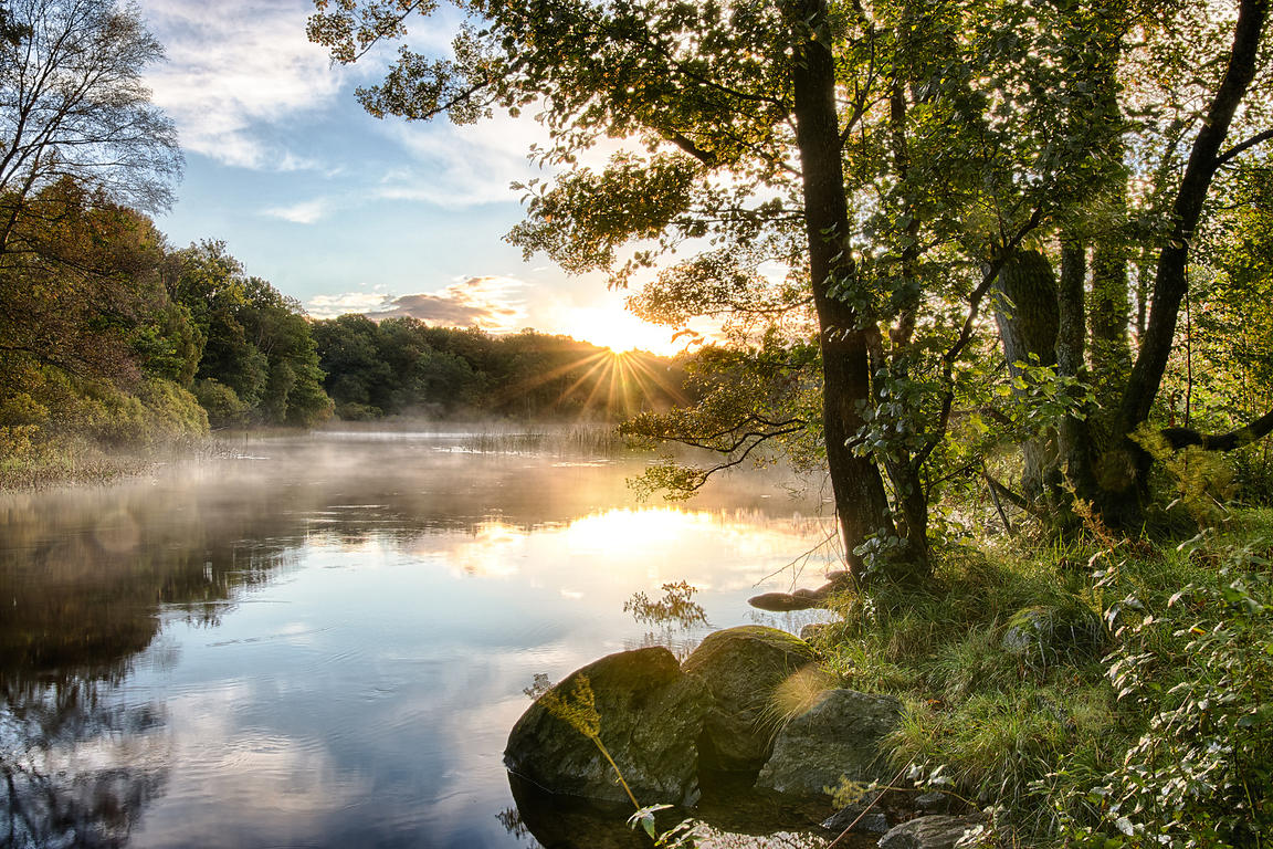 Sunrise over misty stream in autumn