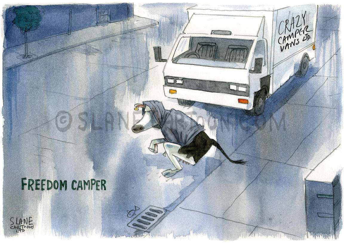 Freedom Camper Cow